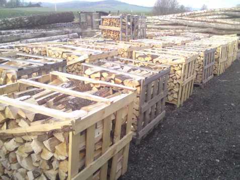 Prodej dřeva hlučín
